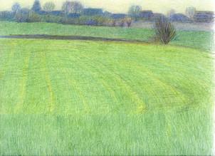 No. 11.  Green field.