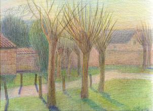No. 3.  The Begijnhof. Trees.
