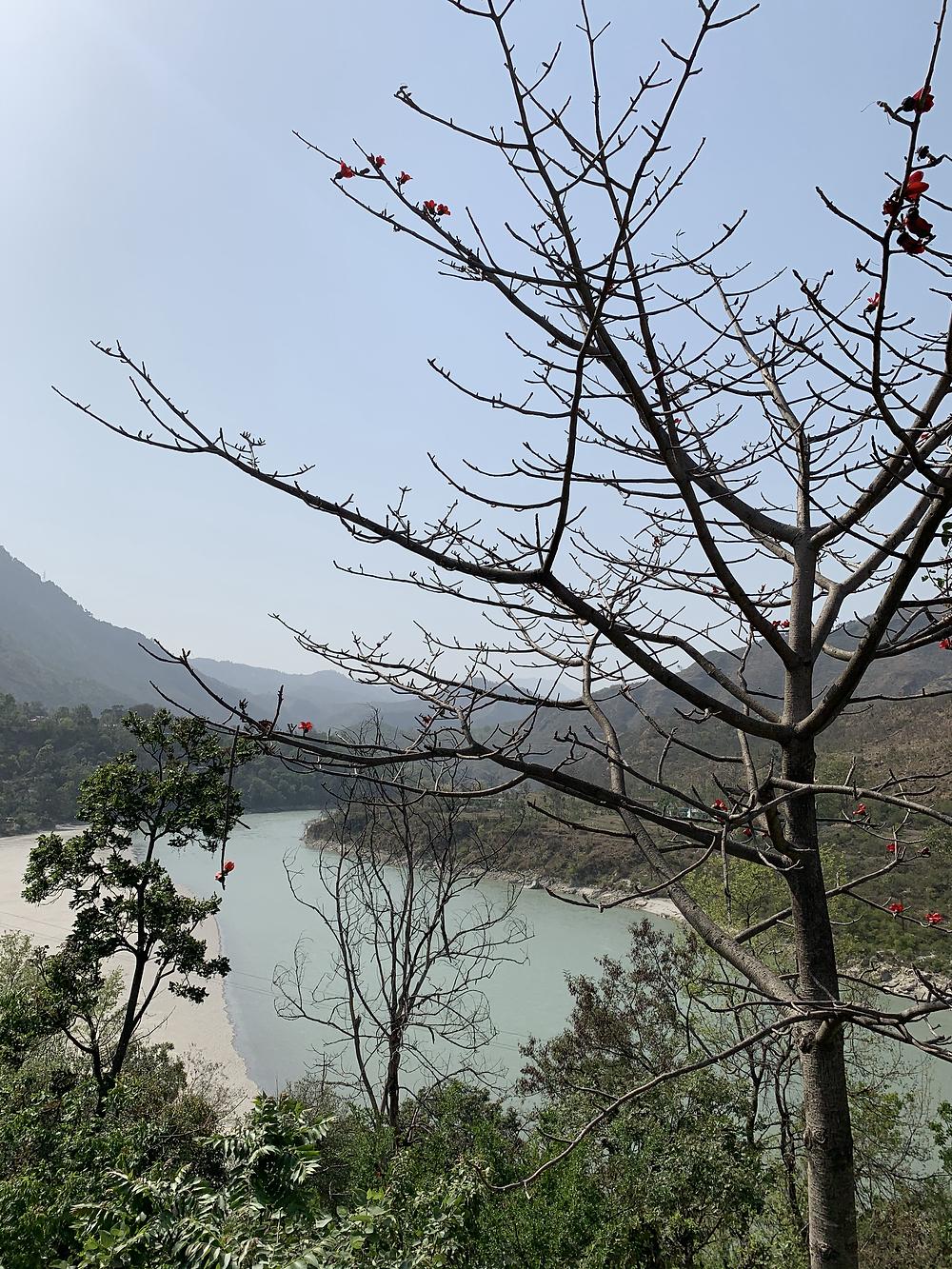 Beautiful views of Satluj all along!