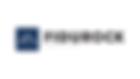 web logo fidurock.png