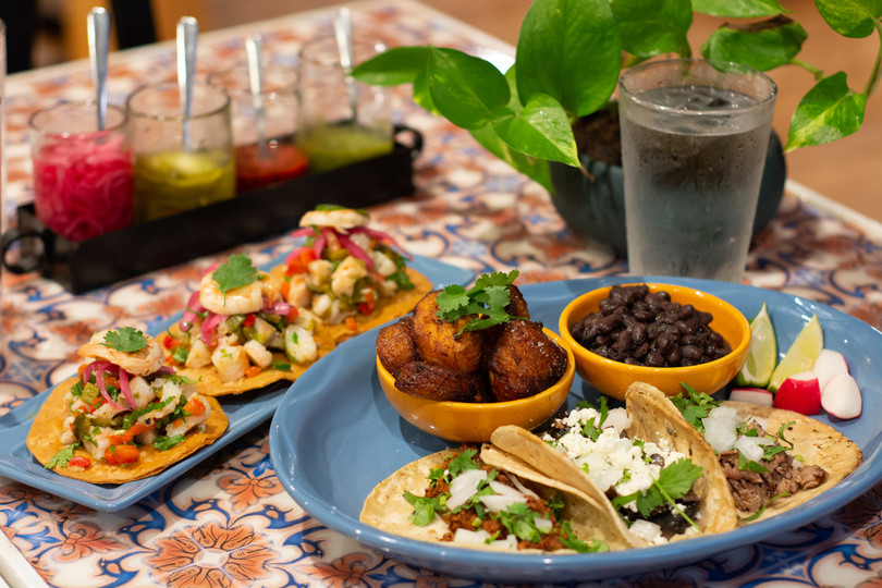 Taco platter & ceviche.jpg