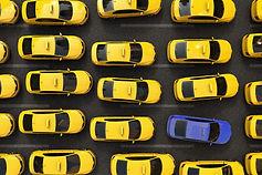 yellow cabs.jpg