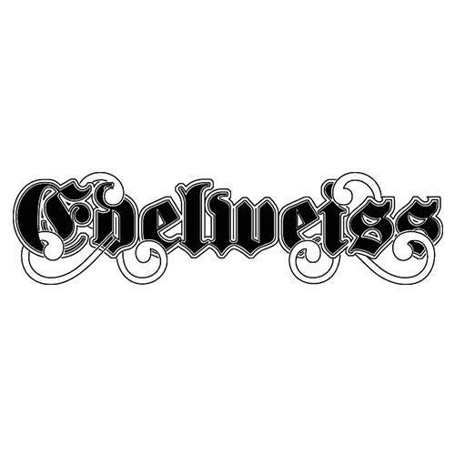 Logo Studio Edelweiss