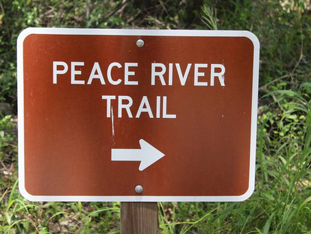 Paynes Creek Historic State Park, Peace River, Nature Tours