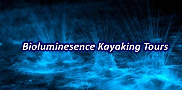 BioLuminescence Kayaking near Orlando, T