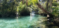 Crystal River Guided Kayaking Tours in F