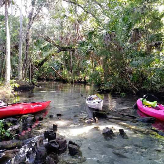 Kayaking Tours, Chassahowitzka, Chazz Sp