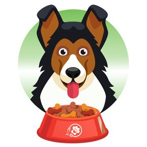 תזונה נכונה של כלב