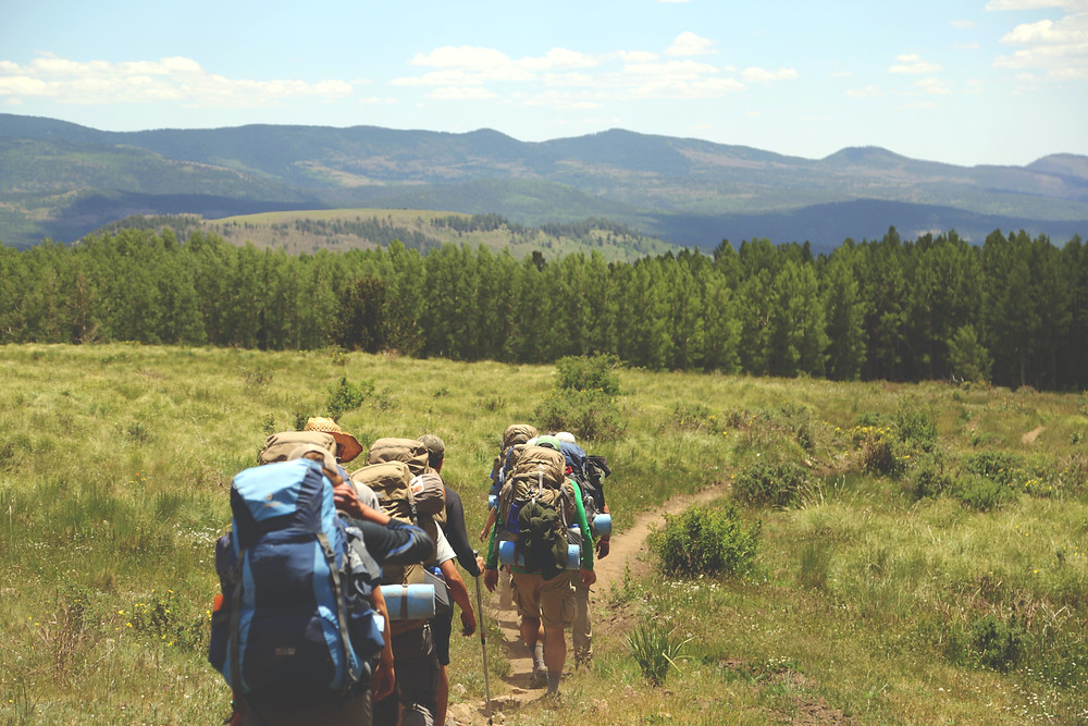 some backpackers hiking down a dirt trail through a green meadow toward on a forest on a sunny day