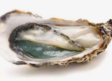 Le supplice de l'huître
