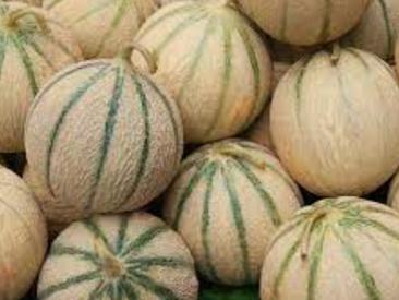 Vous aimez les melons ?