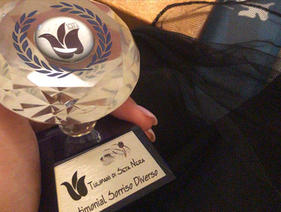 Venice Sorriso Diverso Award