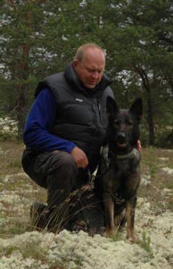 KORAD Vargfjell's Buddy