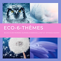 Logo_eco6themes.png