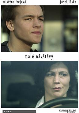 MALE_NAVSTEVY_plakat.jpg