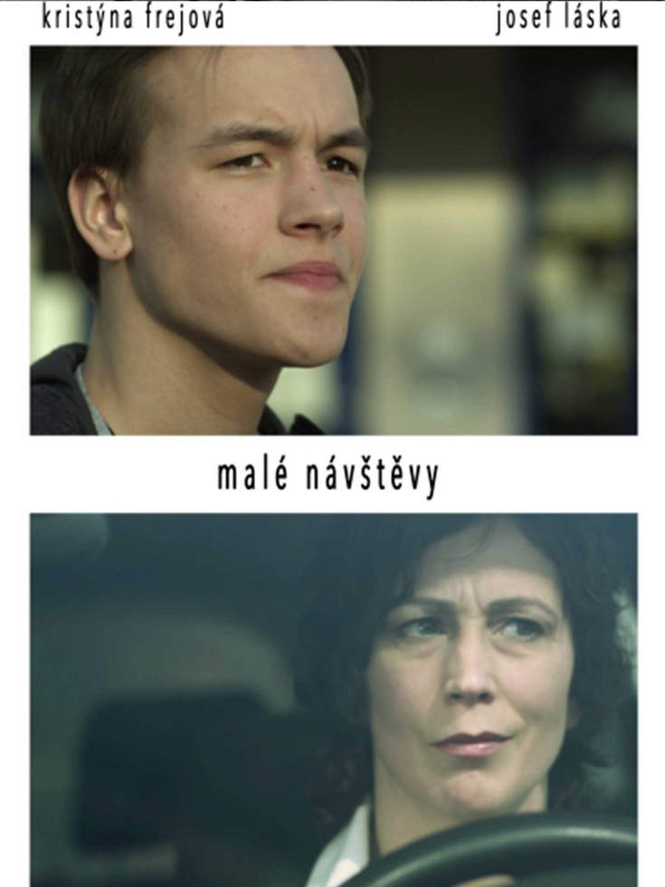 MALE_NAVSTEVY_plakat_web.jpg
