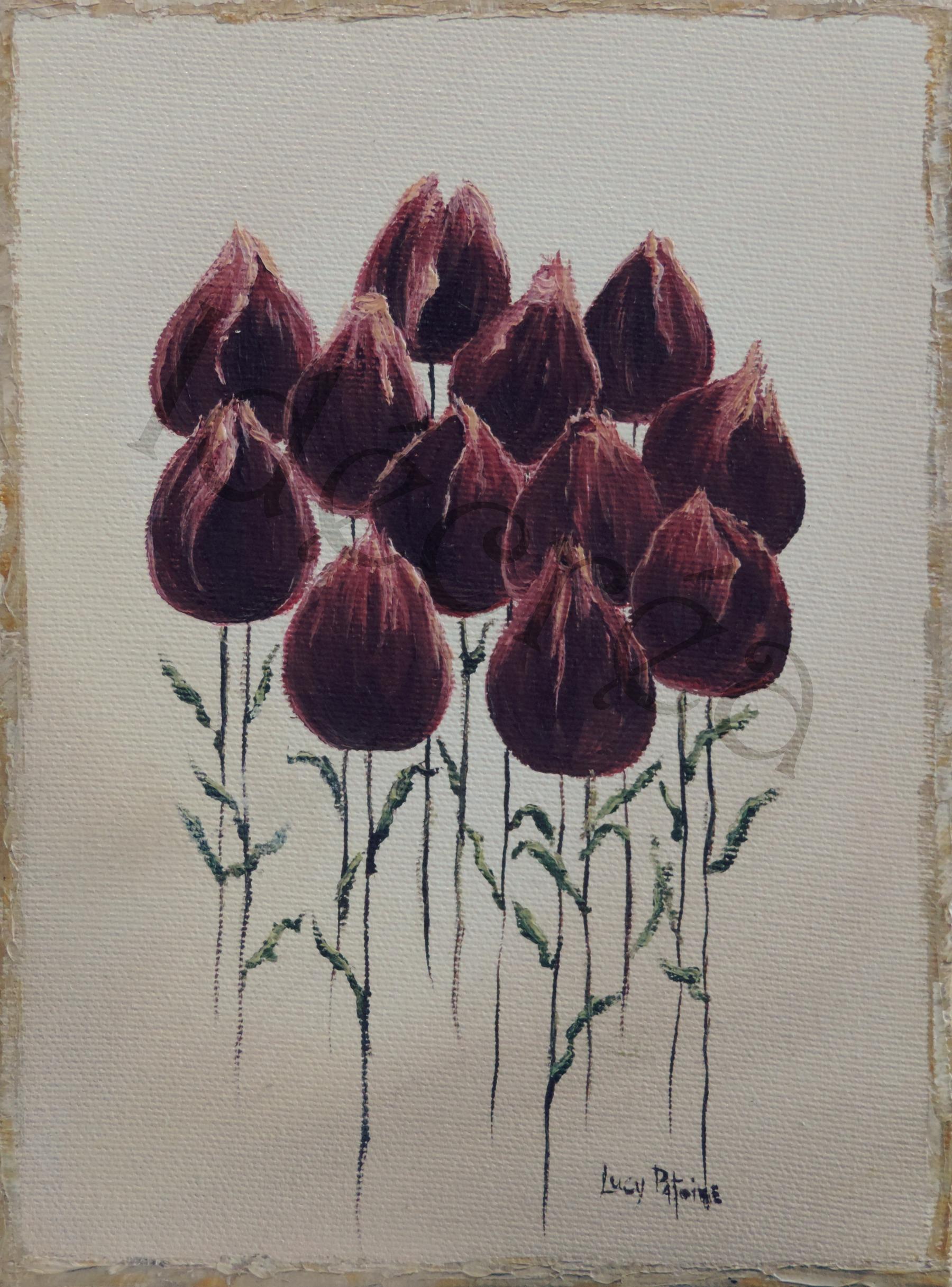 Fleurs de tulipes-ER.jpg