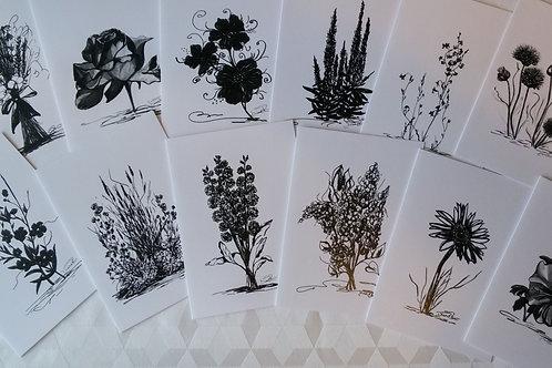 """Paquet de 12 cartes différentes """"Noir et Blanc"""" - Série Floral"""""""