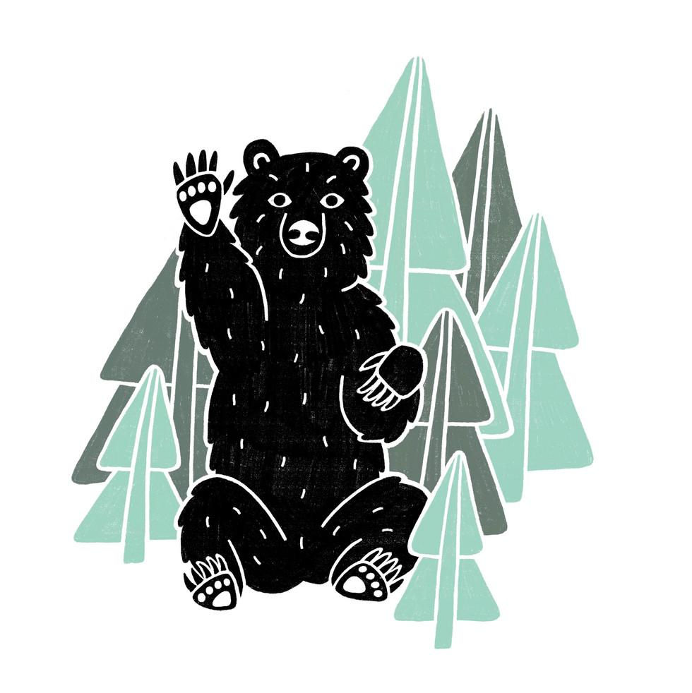Hey Bear.
