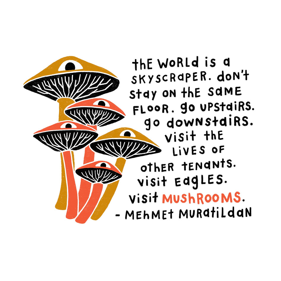 Visit Mushrooms