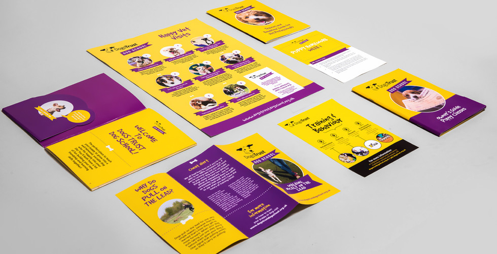 dogs trust collection.jpg