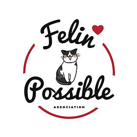 Felin possible 76 association rouen
