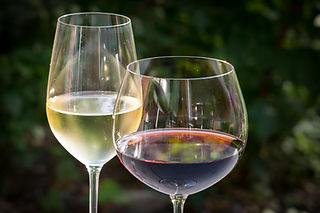 white-wine-glasses - red wine glass - forest background