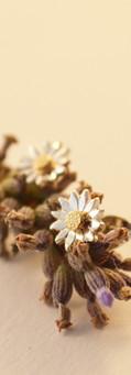 Puces d'oreilles Fleur