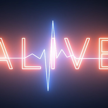Alive - Talent Network
