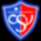logocsv300_400x400.png