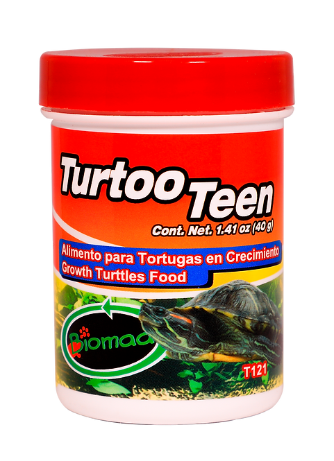 TURTOO TEEN