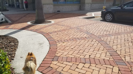 shopping center pavers sanford