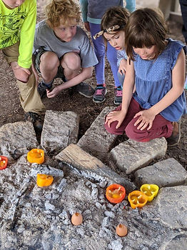 more than s'mores feb 2020.jpg