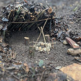 Forts and Fairy Houses.jpg