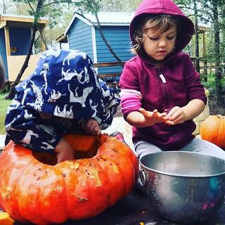 Pumpkin fun at Wild Life Forest Preschoo