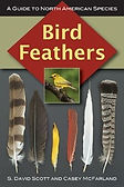 bird-feathers-cover-copy_med.jpg