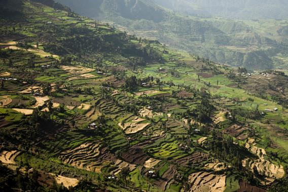Location: Ethiopia