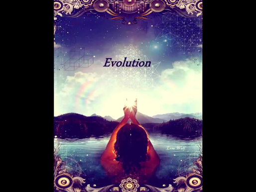 Evolution - Video