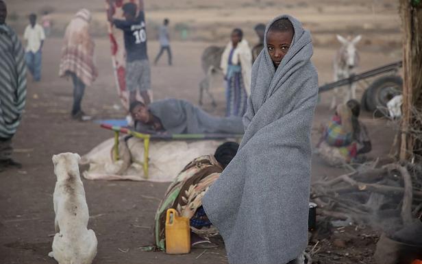 Eritrea's brutal shadow war in Ethiopia laid bare