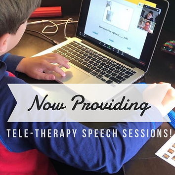 teletherapy image.PNG