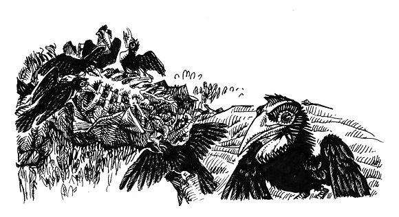 Butcherbirds