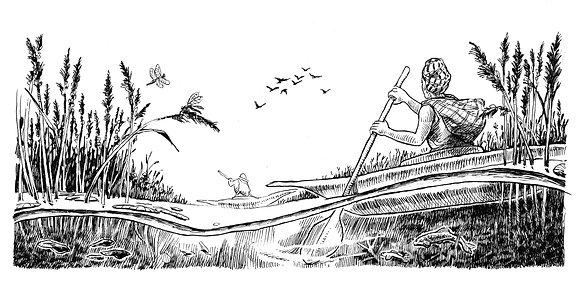 Kayaks in the Marsh
