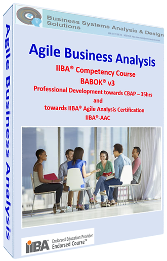 Agile Business Analysis_Cover Page.png