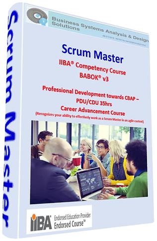 Scrum Master-training business analysis