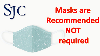 Mask Recommended (2).png