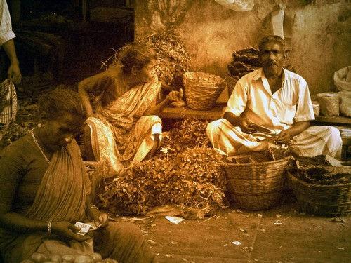 Les Indiens majestueux Pondichéry quelques jours avant le Tsunami du 26 décembre 2004