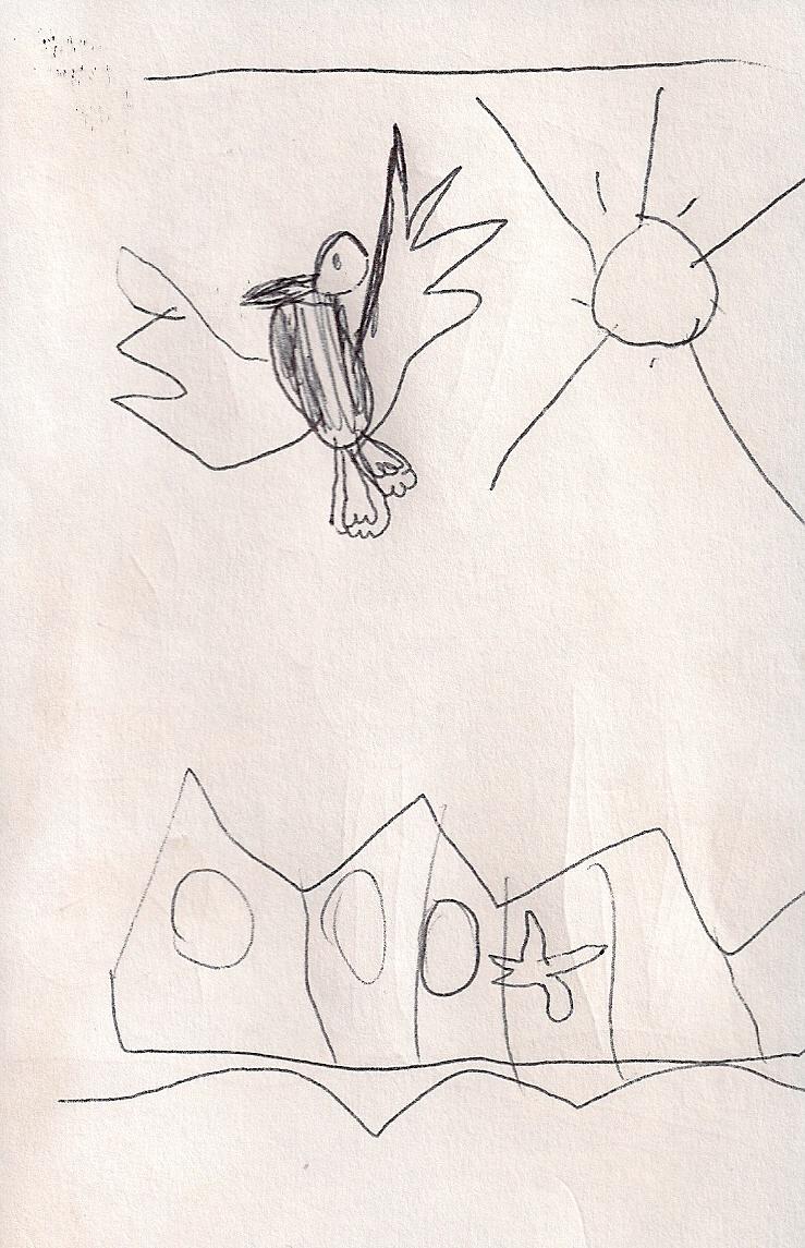 disegno Emilia