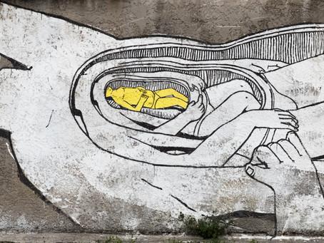 Nel BLU dipinto di grigio. Bologna scopre la street art