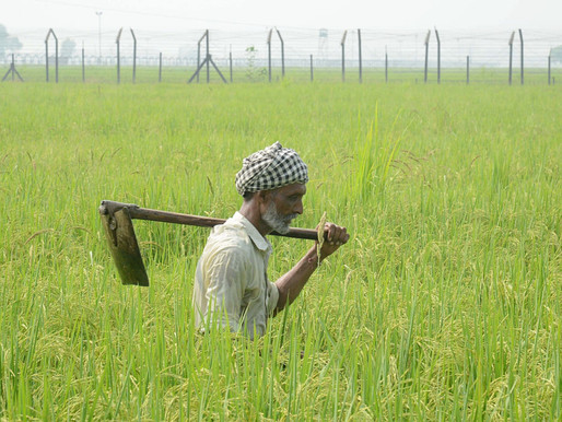 Agonies of India's Bread Basket - The Farmers