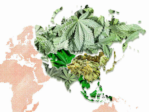 An update about the Legal Status of Cannabis in the World